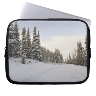 Snow-covered landscape computer sleeve