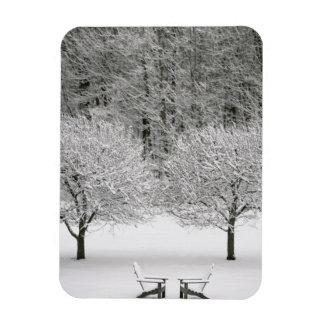 Snow covered landscape magnet