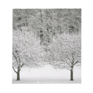 Snow covered landscape notepad