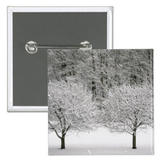 Snow covered landscape pinback button