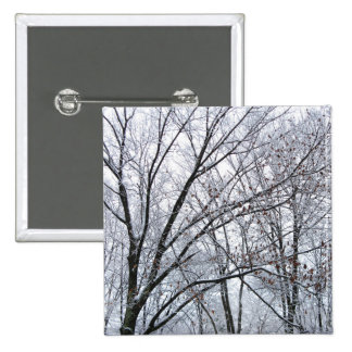 Snow-covered Oak Tree 2 Inch Square Button