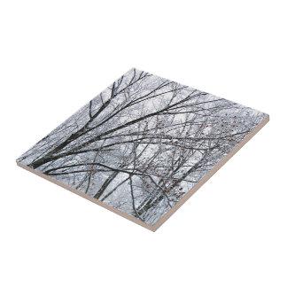 Snow-covered Oak Tree Ceramic Tile