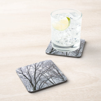 Snow-covered Oak Tree Drink Coaster