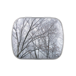 Snow-covered Oak Tree Jelly Belly Tins