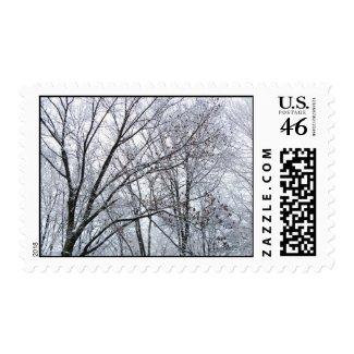 Snow-covered Oak Tree – Medium stamp