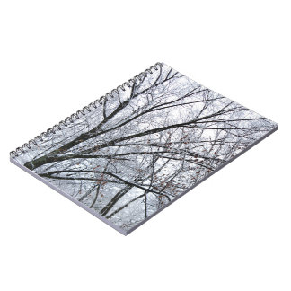 Snow-covered Oak Tree Note Books