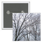 Snow-covered Oak Tree Pinback Buttons