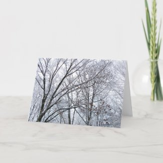Snow-covered Oak Tree Season's Greetings card card
