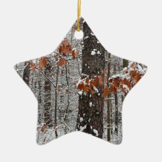 Snow Covered Oak Trees Ornament