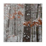 Snow Covered Oak Trees Winter Nature Photography Ceramic Tile