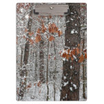 Snow Covered Oak Trees Winter Nature Photography Clipboard