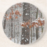 Snow Covered Oak Trees Winter Nature Photography Drink Coaster