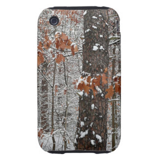 Snow Covered Oak Trees Winter Nature Photography iPhone 3 Tough Covers