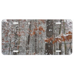 Snow Covered Oak Trees Winter Nature Photography License Plate