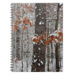 Snow Covered Oak Trees Winter Nature Photography Notebook