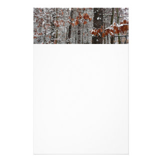 Snow Covered Oak Trees Winter Nature Photography Stationery
