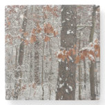 Snow Covered Oak Trees Winter Nature Photography Stone Coaster