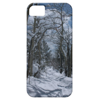 Snow covered path through the Rocky Mountains iPhone SE/5/5s Case