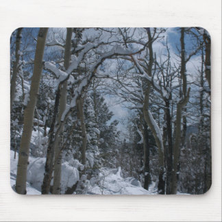 Snow covered path through the Rocky Mountains Mouse Pad