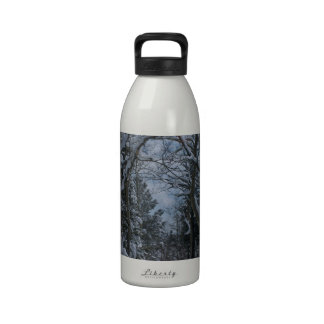 Snow covered path through the Rocky Mountains Water Bottle