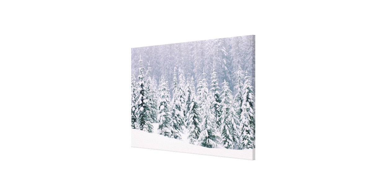 photo printer for iphone snow covered pine trees canvas print zazzle 15849
