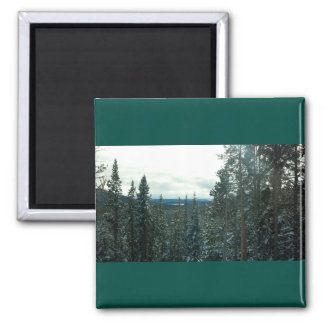 Snow-covered pines mountain scenery magnet