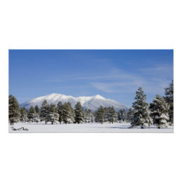 Snow Covered Prairie Pines & San Francisco Peaks Poster