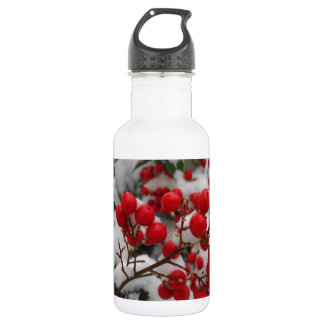 snow covered red berries stainless steel water bottle