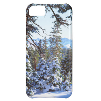 Snow-covered Red Fir trees in the High Sierra 2 iPhone 5C Cases