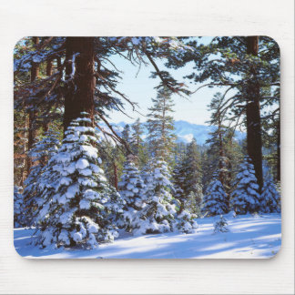 Snow-covered Red Fir trees in the High Sierra 2 Mouse Pad