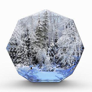 Snow Covered Sheepscot River Acrylic Award