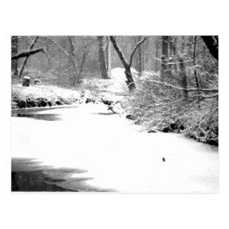 Snow Covered Stony Creek Postcard