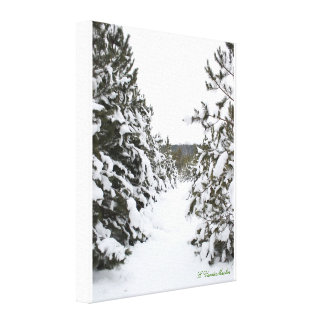 Snow covered trails canvas print