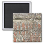 Snow Covered Tree 2 Inch Square Magnet