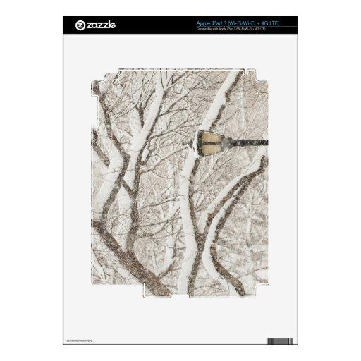 Snow Covered Tree 2 iPad 3 Decal