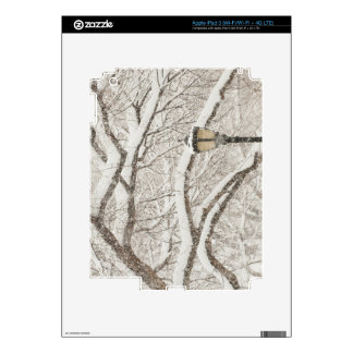 Snow Covered Tree 2 iPad 3 Decals