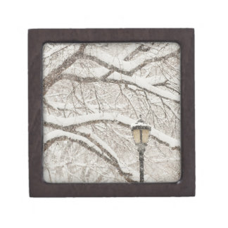 Snow Covered Tree 2 Keepsake Box