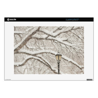 Snow Covered Tree 2 Decal For Laptop