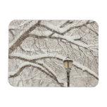 Snow Covered Tree 2 Vinyl Magnets