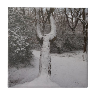 Snow Covered Tree In Epping Forest Ceramic Tiles