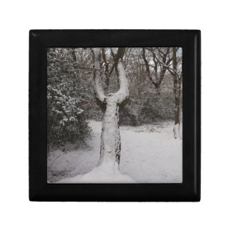 Snow Covered Tree In Epping Forest Gift Boxes