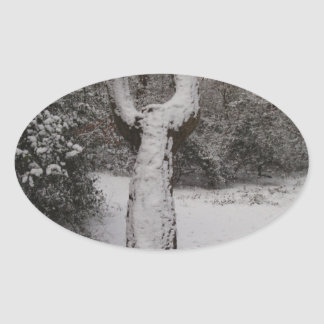 Snow Covered Tree In Epping Forest Oval Sticker