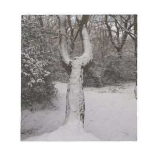 Snow Covered Tree In Epping Forest Scratch Pad