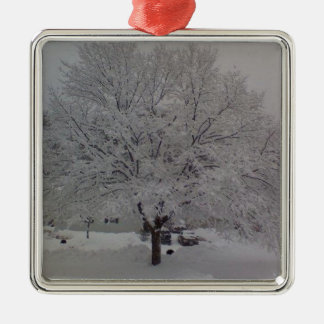 Snow Covered Tree In Maine Christmas Ornament