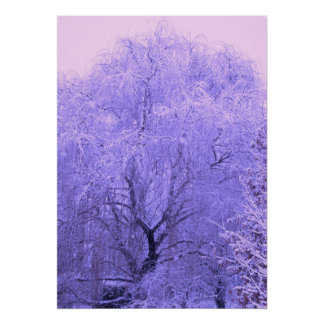 Snow-Covered Tree Poster