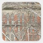 Snow Covered Tree Square Sticker