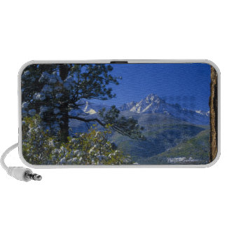 Snow covered trees and the Sneffels Wilderness Notebook Speakers