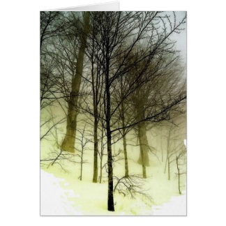 Snow Covered Trees Card