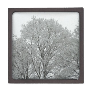 Snow Covered Trees Gift Box