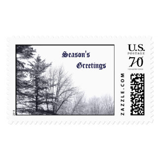 Snow-covered Trees: Horizontal – Large Postage